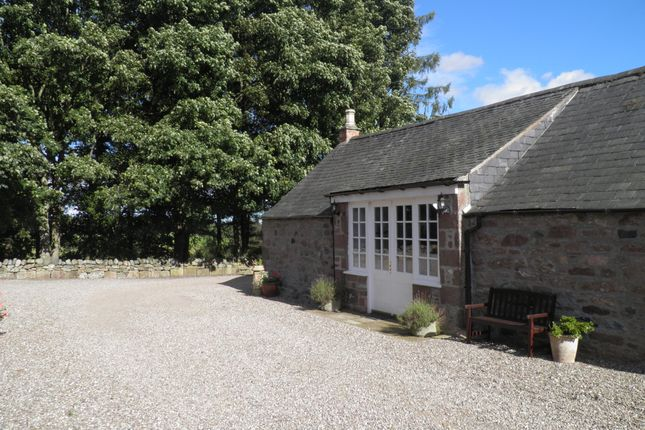 Thumbnail Detached bungalow to rent in Forfar