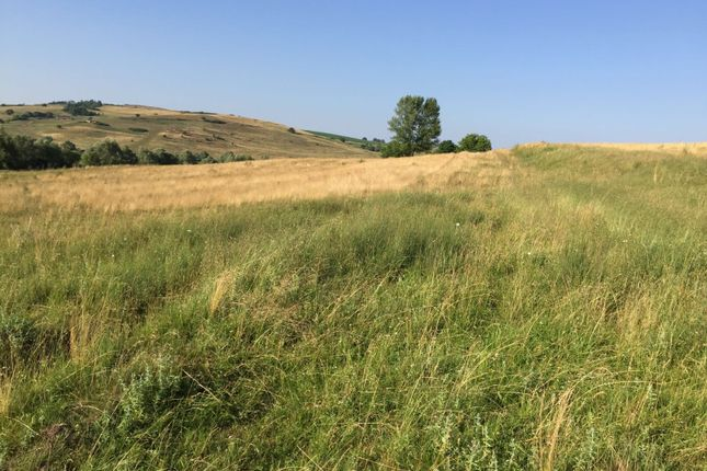 Thumbnail Land for sale in Brasov County, Transylvania, Romania