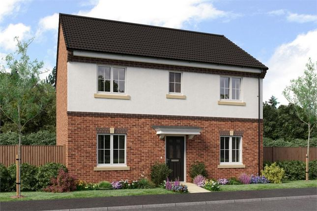 "Thumbnail Detached house for sale in ""Buchan"" at Sophia Drive, Great Sankey, Warrington"