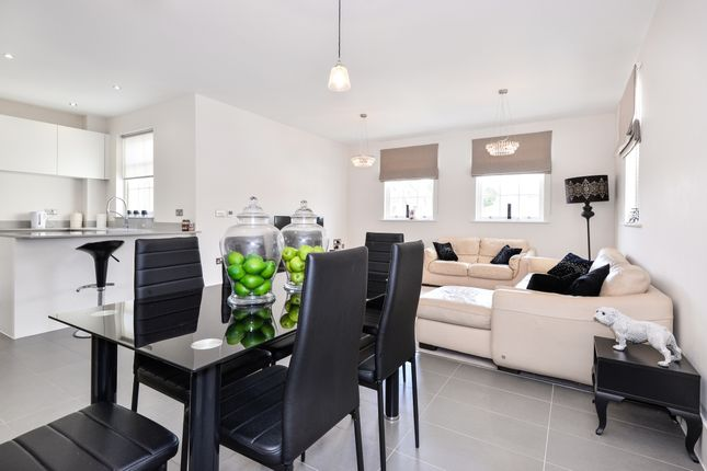 Thumbnail Flat to rent in St. Cross Road, St Cross, Winchester