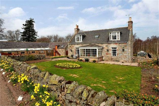 Thumbnail Cottage for sale in Banchory, Banchory, Aberdeenshire