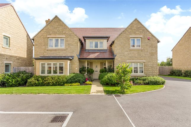 Thumbnail Detached house for sale in Great Dunns Close, Beckington, Somerset
