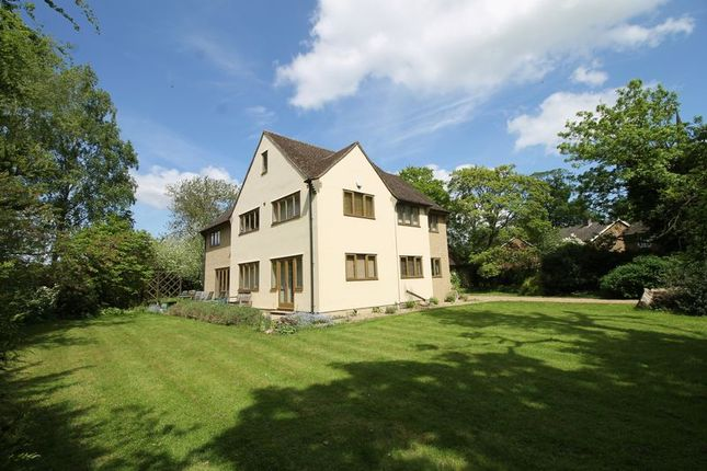 Thumbnail Detached house for sale in Church Lane, Sharnbrook, Bedford
