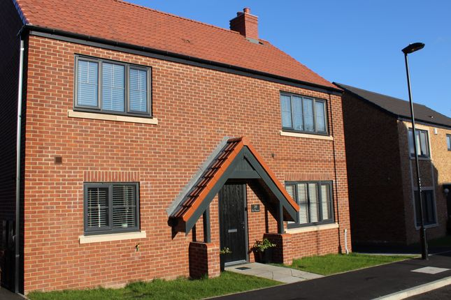 Thumbnail Detached house for sale in The Meadows, Wallsend, Newcastle