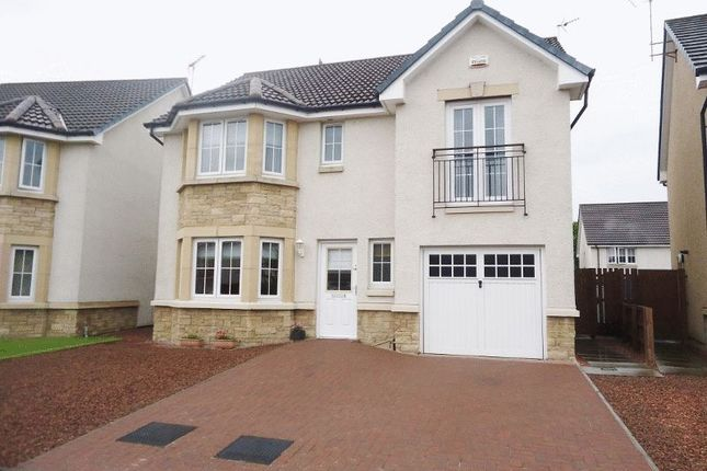 Thumbnail Detached house for sale in Sandpiper Meadow, Alloa