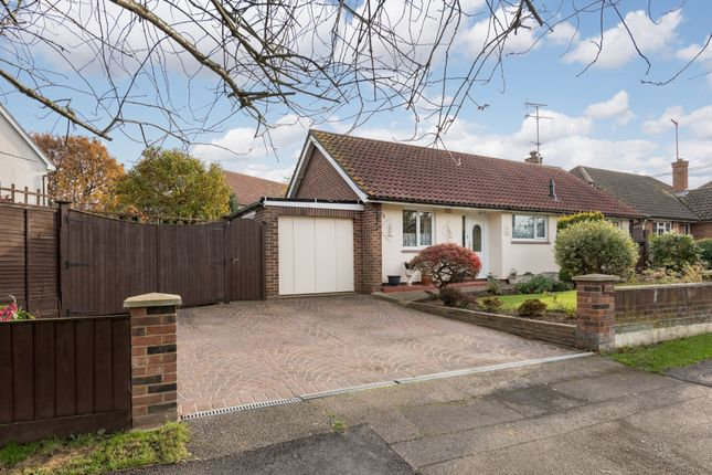 Thumbnail Detached bungalow for sale in Beehive Lane, Great Baddow, Chelmsford