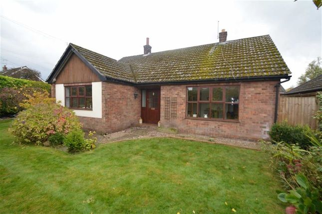 3 bed detached bungalow for sale in Manor Park, Sychdyn, Mold
