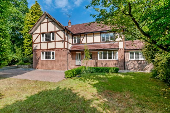 Thumbnail Detached house to rent in Hookstone Road, Harrogate, North Yorkshire