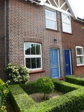 Thumbnail Cottage to rent in Colville Road, Melton Constable