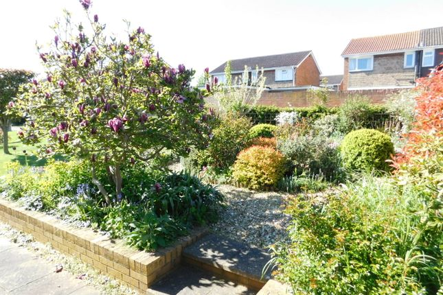Front Garden of Rookery Walk, Clifton, Shefford SG17