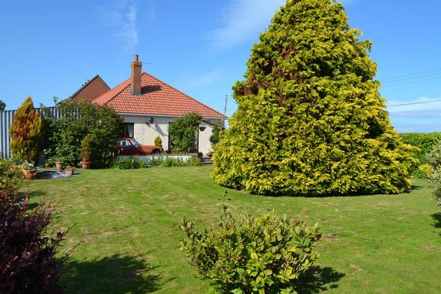 Thumbnail Detached bungalow for sale in Catcott Road, Burtle, Bridgwater