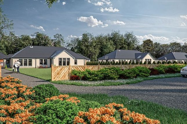 Thumbnail Detached bungalow for sale in Clydesdale Terrace, Cannonholm Road, Auchenheath, Lanark