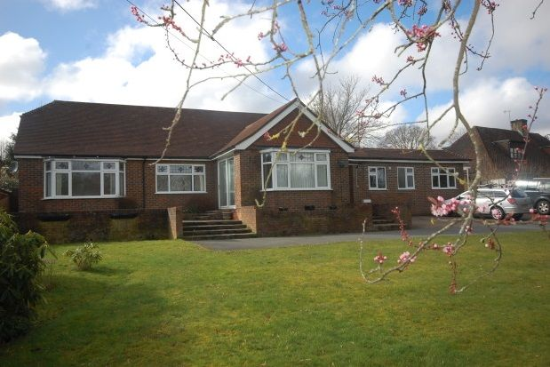 Thumbnail Bungalow to rent in Straight Half Mile, Maresfield, Uckfield