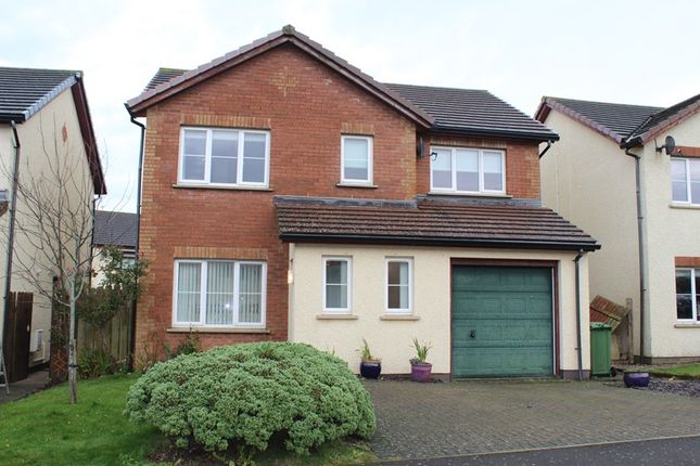 4 bed detached house to rent in Campion Close, Peel, Peel, Isle Of Man IM5