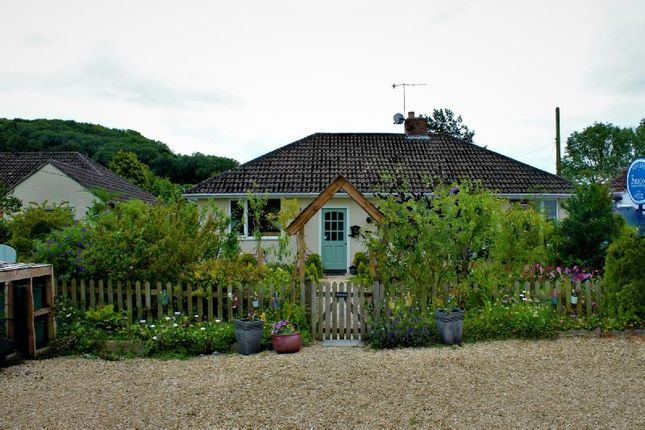 Thumbnail Detached bungalow for sale in Station Road, Sandford, Winscombe