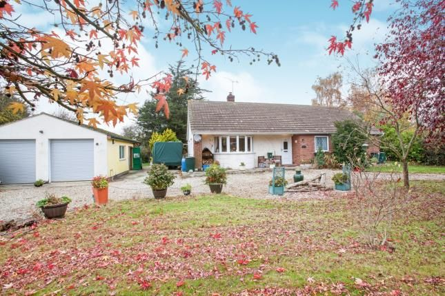 Thumbnail Bungalow for sale in Althorne, Essex, Chelmsford