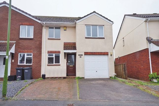 Thumbnail Semi-detached house to rent in Treesdale Close, Paignton