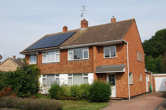 Thumbnail Semi-detached house to rent in Willow Lea, Tonbridge