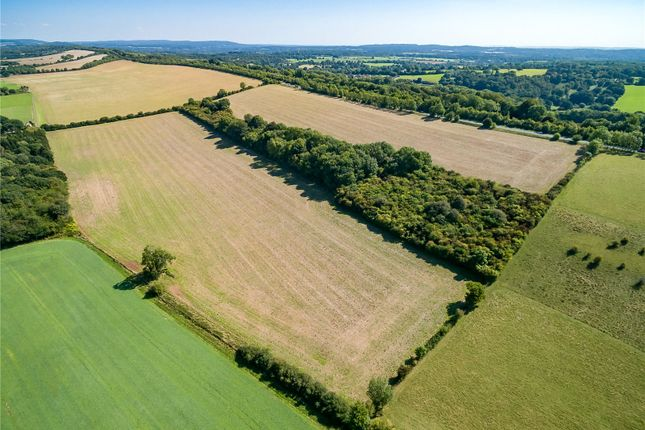 Thumbnail Land for sale in Wanborough, Guildford, Surrey