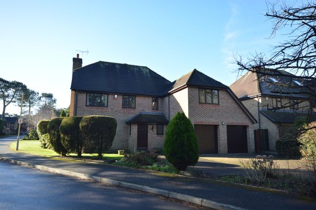 Thumbnail Detached house for sale in Wickham Drive, Corfe Mullen