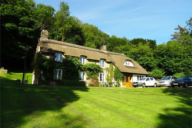 Thumbnail Cottage for sale in Rookham Hill, Rookham, Wells, Somerset