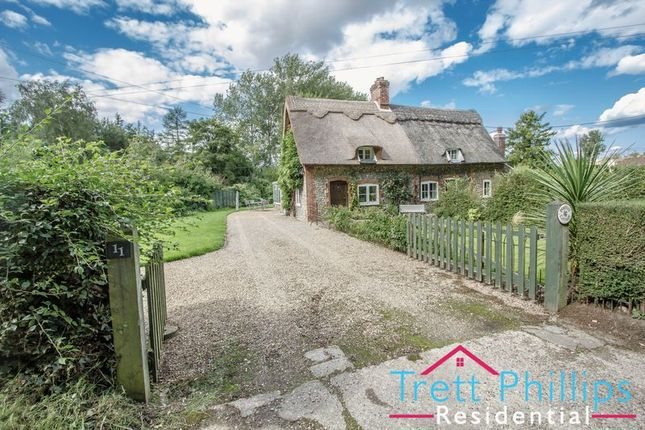Thumbnail Cottage for sale in The Common, Hanworth, Norwich