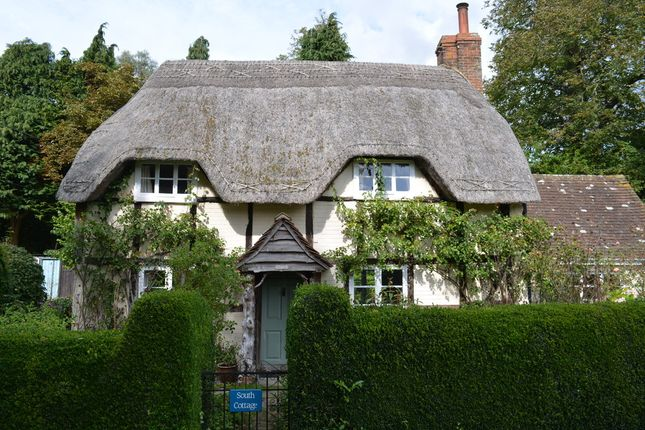Thumbnail Cottage to rent in Conock, Devizes