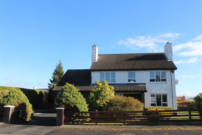 Thumbnail Detached house for sale in Liska Avenue, Newry