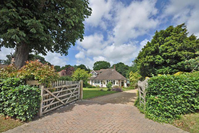 Thumbnail Detached bungalow for sale in Church Road, Herstmonceux, Hailsham