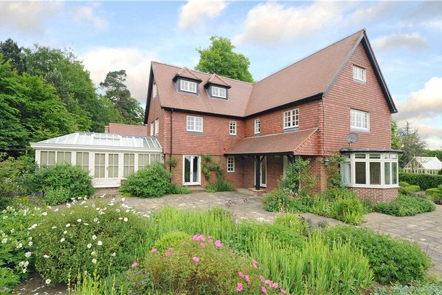 Thumbnail Detached house to rent in Ely Grange Estate, Frant, Tunbridge Wells, Kent