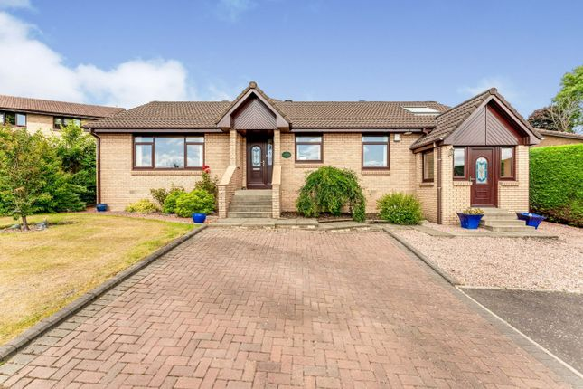 Thumbnail Bungalow for sale in Laxdale Drive, Denny, Stirlingshire