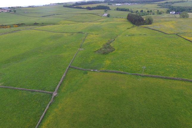 Thumbnail Land for sale in Thornley, Tow Law, Bishop Auckland