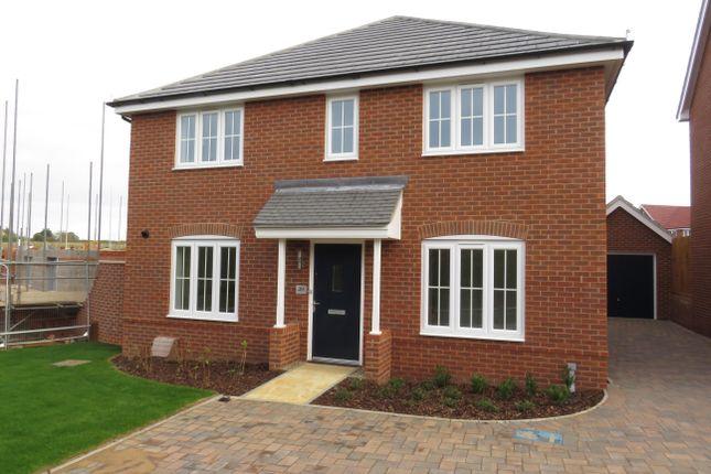 Thumbnail Detached house to rent in Casey Jones Close, Bury St. Edmunds