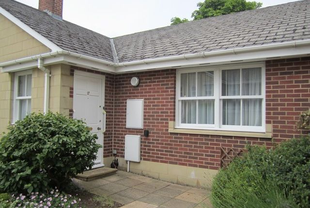 Thumbnail Semi-detached bungalow to rent in Suffolk Square, Cheltenham