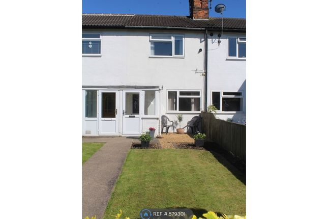 Thumbnail Terraced house to rent in Railway Terrace, Eaglescliffe, Stockton-On-Tees