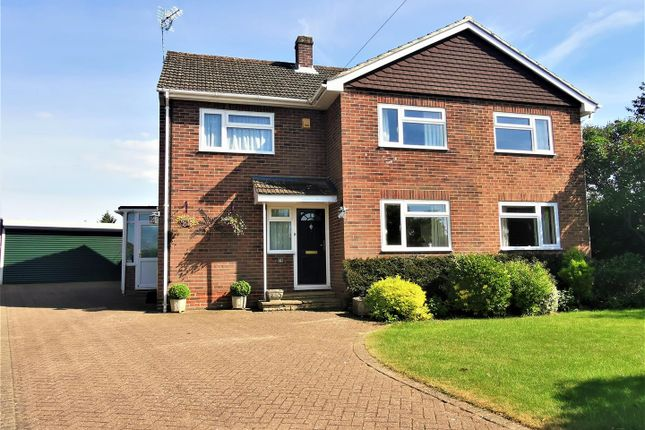 Thumbnail Detached house for sale in Holly Drive, Old Basing, Basingstoke