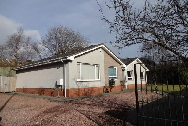 Thumbnail Detached bungalow to rent in Ferry Road, Monifieth