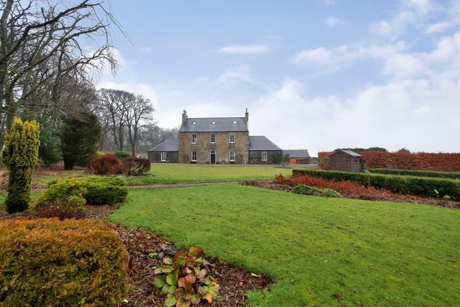 Thumbnail Detached house to rent in Tarves, Ellon