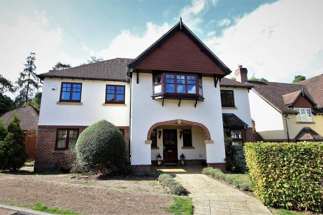 Thumbnail Detached house for sale in Hawley Grove, Hawley
