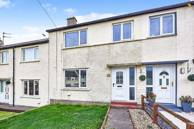 Thumbnail Terraced house to rent in Meadow Road, Wigton