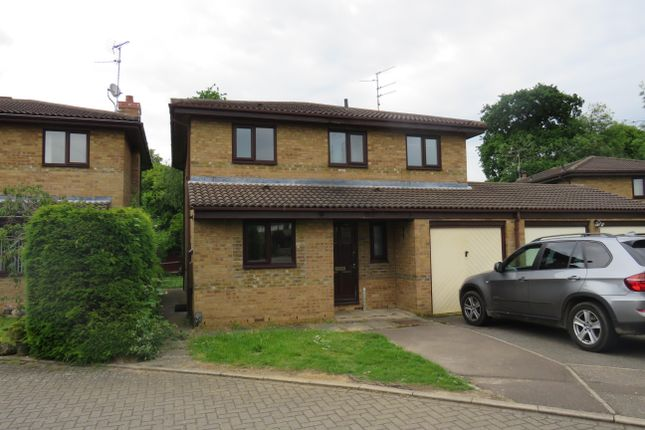 Thumbnail Property to rent in Five Arches, Orton Wistow, Peterborough