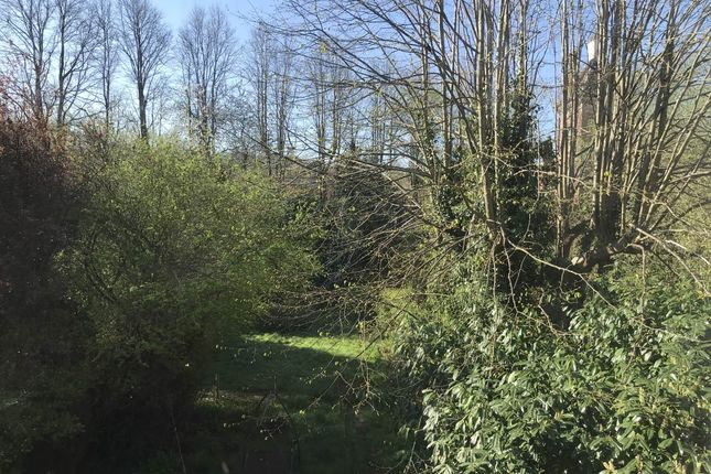 Img_0252 of Montacute Gardens, Tunbridge Wells, Kent TN4
