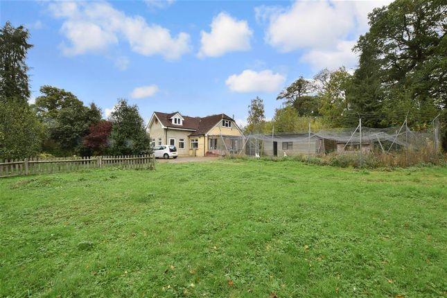 Thumbnail Detached bungalow for sale in Woodcock Hill, Felbridge, West Sussex