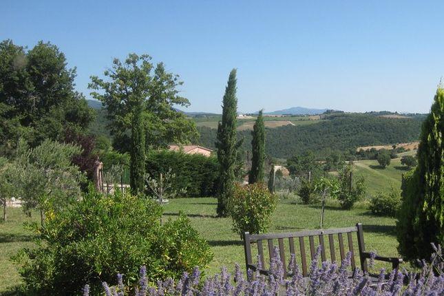 Garden of La Torretta, Grutti, Todi, Umbria