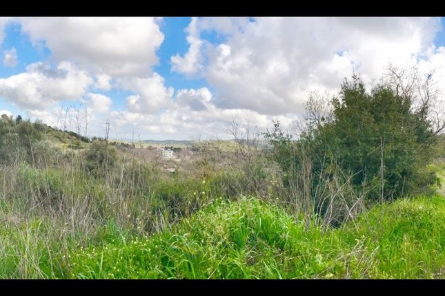 Thumbnail Land for sale in Stroumbi, Paphos, Cyprus