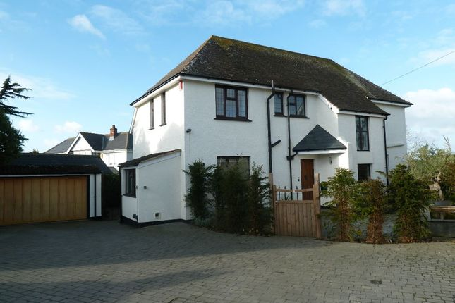 Thumbnail Detached house to rent in Halsdon Lane, Exmouth