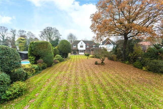 Thumbnail Detached house for sale in Upper Cornsland, Brentwood, Essex