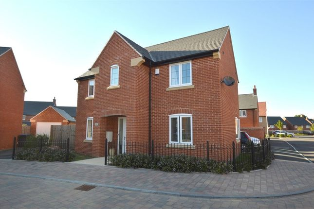 Thumbnail Detached house to rent in Roundhouse Drive, Cawston, Rugby, Warwickshire