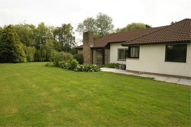 Property To Rent In Wellington Somerset