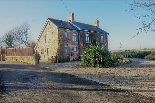 Thumbnail Detached house for sale in Goldcliff, Newport